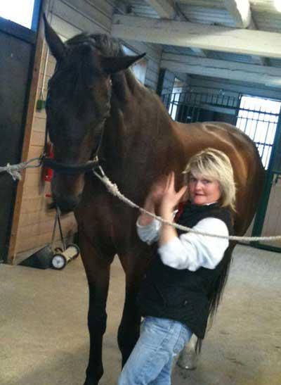 Janes hälsa kraniosakral terapi häst
